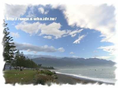 【NewZealand紐西蘭打工度假日記】野炊旅行一~在紐西蘭趴趴